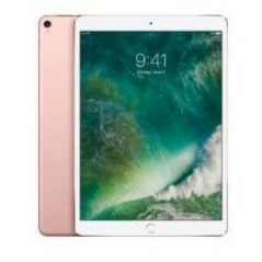 £10.5 IPADPRO WI-FI CELL 256GB RG
