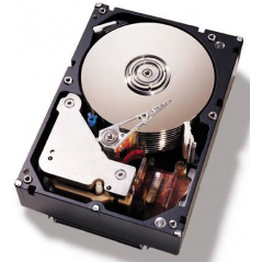 IBM 81Y9806 disco rigido interno HDD 1000 GB Serial ATA III