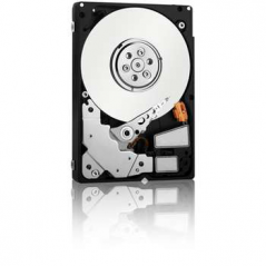 FUJITSU SERVER HDD 1TB SATA H.SWAP 6GB/S (BUSINESS CRITICAL) PER TX-140/150/200/300 OPPURE RX 100/300